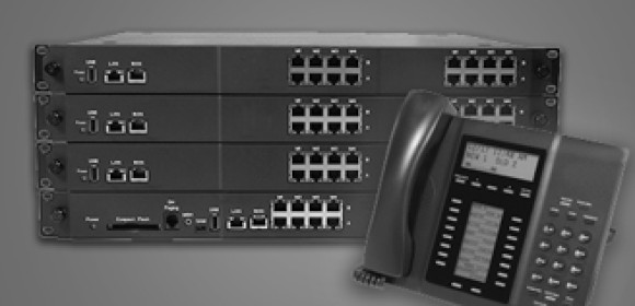 Business Hosted IP